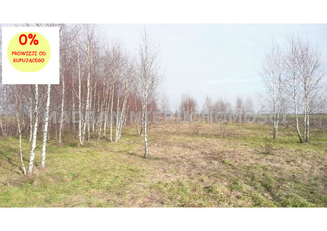 Działka na sprzedaż - Lutomiersk, Pabianicki, 9600 m², 85 000 PLN, NET-MDR-GS-422