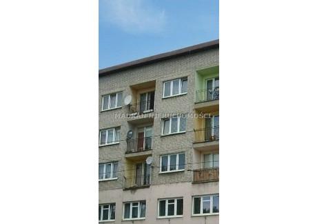 Lokal do wynajęcia - Centrum, Pabianice, Pabianicki, 235 m², 8238 PLN, NET-MDR-LW-179
