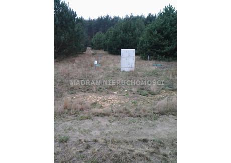 Działka na sprzedaż - Drzewociny, Dłutów, Pabianicki, 1400 m², 56 000 PLN, NET-MDR-GS-645