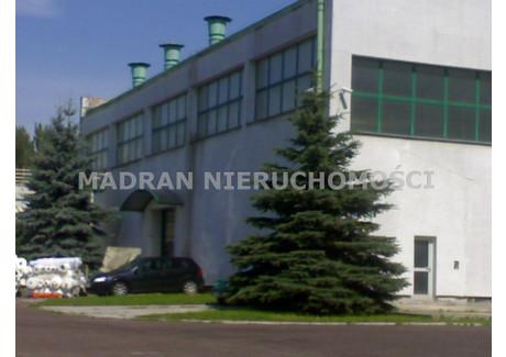 Magazyn do wynajęcia - Teofilów, Bałuty, Łódź, Łódź M., 1220 m², 17 080 PLN, NET-MDR-HW-301