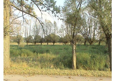 Działka na sprzedaż - Piotrowice, Karczew, Otwocki, 13 200 m², 462 000 PLN, NET-133914