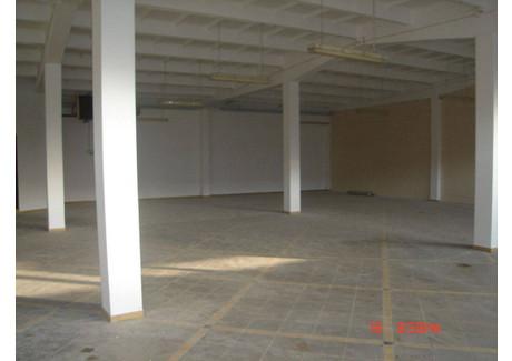 Lokal do wynajęcia - Kluczbork, Kluczborski, 545,01 m², 10 900 PLN, NET-66450162