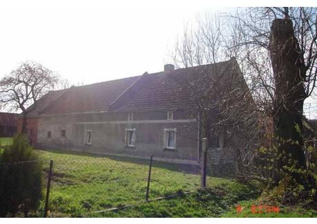 Dom na sprzedaż - Krzywiczyny, Wołczyn, Kluczborski, 160 m², 250 000 PLN, NET-16030162