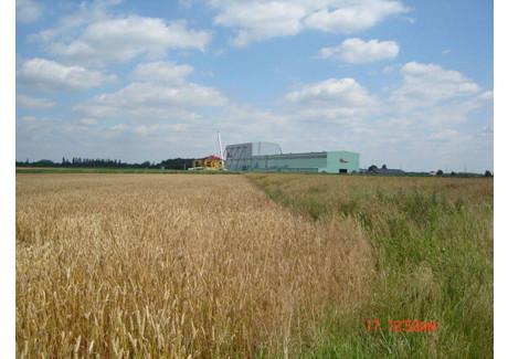 Działka na sprzedaż - Ligota Górna, Kluczbork, Kluczborski, 22 000 m², 1 800 000 PLN, NET-159370162