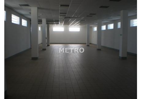 Magazyn do wynajęcia - Bartodzieje, Bydgoszcz, Bydgoszcz M., 600 m², 18 000 PLN, NET-MET-HW-110010
