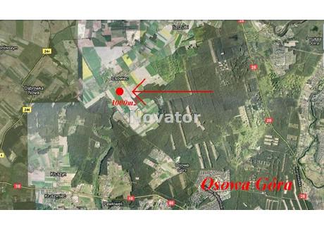 Działka na sprzedaż - Osówiec, Sicienko, Bydgoski, 1000 m², 100 000 PLN, NET-NOV-GS-118079