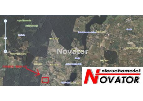 Działka na sprzedaż - Jania Góra, Świekatowo, Świecki, 4800 m², 98 000 PLN, NET-NOV-GS-110392