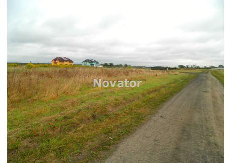 Działka na sprzedaż - Lisi Ogon, Białe Błota, Bydgoski, 10 000 m², 499 000 PLN, NET-NOV-GS-119781