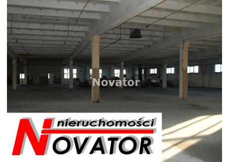 Magazyn do wynajęcia - Centrum, Bydgoszcz, Bydgoszcz M., 300 m², 4500 PLN, NET-NOV-HW-119674