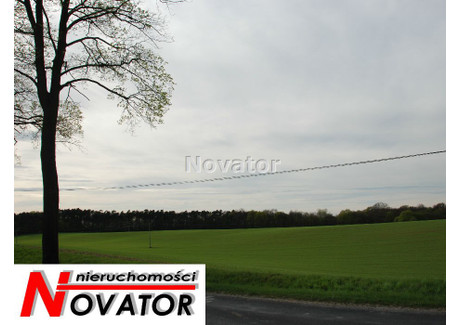 Działka na sprzedaż - Ostromecko, Dąbrowa Chełmińska, Bydgoski, 154 100 m², 9 240 000 PLN, NET-NOV-GS-105190