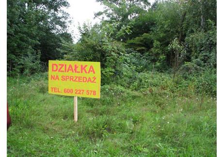 Działka na sprzedaż - Wilkowo, Świebodzin, Świebodziński, 5281 m², 162 400 PLN, NET-3385