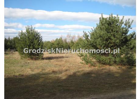 Działka na sprzedaż - Budy Mszczonowskie, Radziejowice, Żyrardowski, 941 m², 97 000 PLN, NET-GRO-GS-746