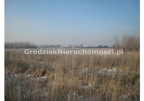 Działka na sprzedaż - Esterka, Nowy Kawęczyn, Skierniewicki, 103 000 m², 1 236 000 PLN, NET-GRO-GS-635