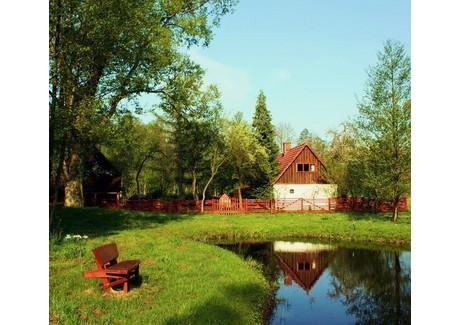 Dom na sprzedaż - BORUJA NOWA Boruja Nowa, Nowy Tomyśl (gm.), Nowotomyski (pow.), 165 m², 890 000 PLN, NET-91
