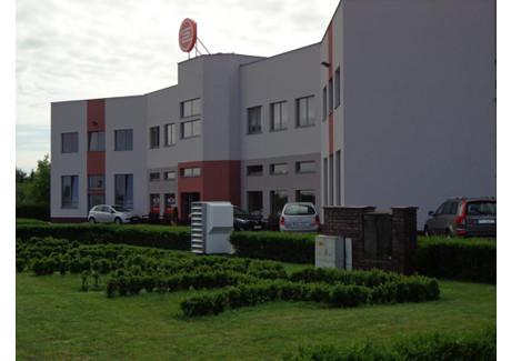 Biurowiec do wynajęcia - Przy Autostradzie Luboń, Poznański (pow.), 38 m², 1900 PLN, NET-65
