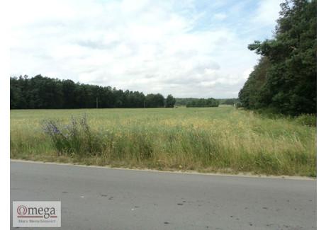 Działka na sprzedaż - Nowe Iganie, Siedlce, Siedlecki, 1100 m², 121 000 PLN, NET-OMG-GS-45275