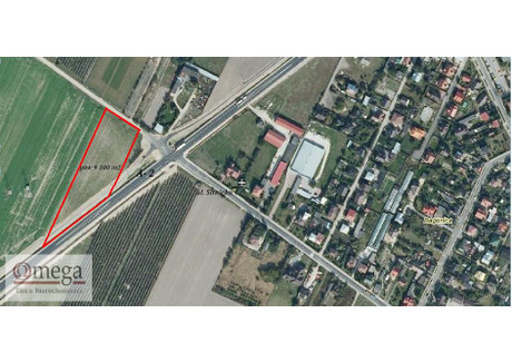 Działka na sprzedaż - Biała Podlaska, Bialski, 9300 m², 558 000 PLN, NET-OMW-GS-2996