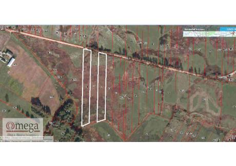 Działka na sprzedaż - Chodów, Siedlce, Siedlecki, 10 600 m², 265 000 PLN, NET-OMG-GS-45063