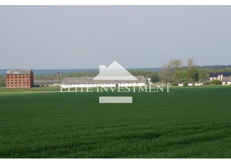 Magazyn na sprzedaż - Pakosław, Iłża, Radomski, 50 700 m², 1 700 000 PLN, NET-1/3720/OOS