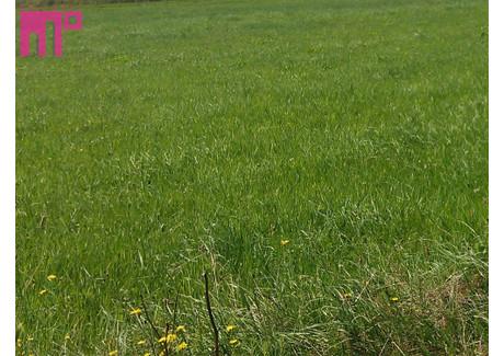 Działka na sprzedaż - Mąkołowiec, Tychy, Tychy M., 510 m², 140 000 PLN, NET-BEN-GS-6190-8