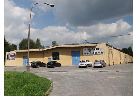 Magazyn do wynajęcia - Rozrywka 1 Prądnik Czerwony, Kraków, 2459 m², 35 000 PLN, NET-34