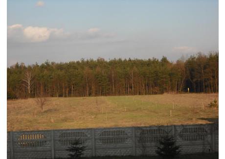 Działka na sprzedaż - Herby, Herby (gm.), Lubliniecki (pow.), 800 m², 40 000 PLN, NET-22/08/13