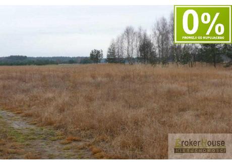 Działka na sprzedaż - Ozimek, Opolski, 7700 m², 227 000 PLN, NET-3245