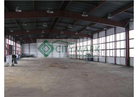 Fabryka, zakład na sprzedaż - Szydłowiec, Szydłowiecki, 2400 m², 1 900 000 PLN, NET-66220