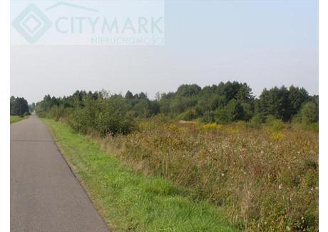 Działka na sprzedaż - Radziejowice, Żyrardowski, 23 000 m², 2 990 000 PLN, NET-67285