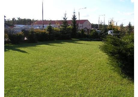 Dom na sprzedaż - Nieporęt, Legionowski, 436 m², 1 325 000 PLN, NET-50977