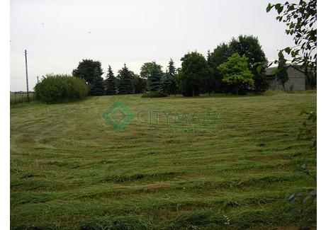 Działka na sprzedaż - Janki, Raszyn, Pruszkowski, 9900 m², 3 850 000 PLN, NET-68095