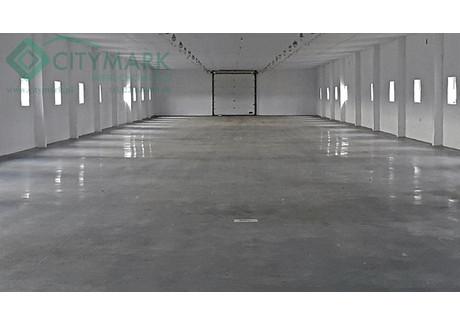 Hala do wynajęcia - Nowy Prażmów, Prażmów, Piaseczyński, 1056 m², 12 000 PLN, NET-78328