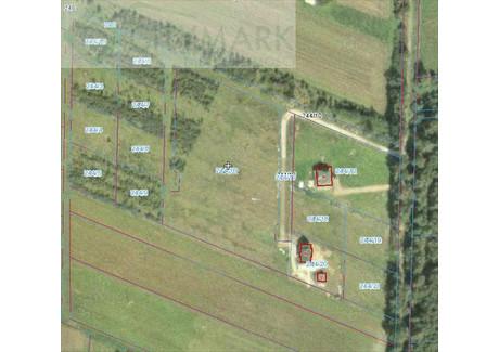 Działka na sprzedaż - Brukowa Dębe Wielkie, Miński, 9983 m², 399 320 PLN, NET-71220