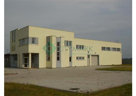 Biuro do wynajęcia - Szeligi, Ożarów Mazowiecki, Warszawski Zachodni, 600 m², 25 000 PLN, NET-59129