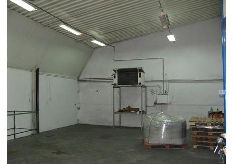 Komercyjne do wynajęcia - Centrum, Sulechów, Zielonogórski, 79 m², 1500 PLN, NET-PAW-RE53-798-38877
