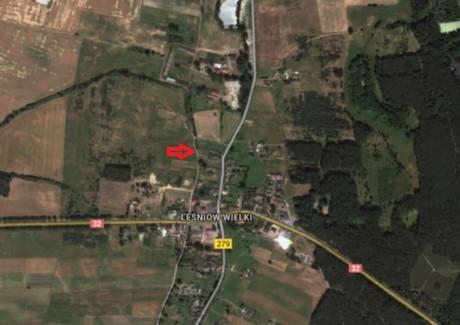 Działka na sprzedaż - Leśniów Wielki, Czerwieńsk, Zielonogórski, 8200 m², 123 000 PLN, NET-ROM-RE31-669-30953