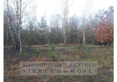 Działka na sprzedaż - Ludwikowo Joniec, Ludwikowo, Płoński, 39 900 m², 199 000 PLN, NET-698/251/ODzS
