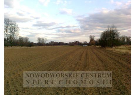 Działka na sprzedaż - Leoncin, Wilków Polski, Nowodworski, 40 500 m², 364 500 PLN, NET-459/251/ODzS