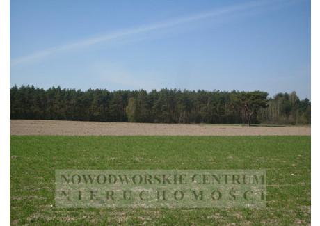 Działka na sprzedaż - Pomiechówek, Szczypiorno, Nowodworski, 40 000 m², 600 000 PLN, NET-374/251/ODzS