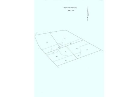 Działka na sprzedaż - Słone, Świdnica, Zielonogórski, 12 300 m², 492 000 PLN, NET-4220297
