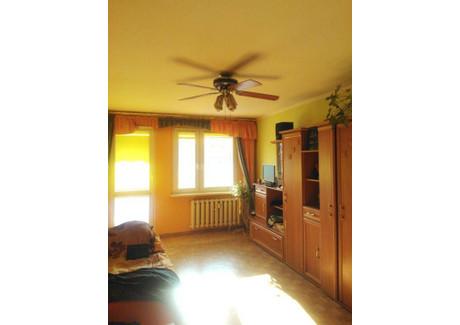 Mieszkanie na sprzedaż - Zielona Góra, 60 m², 199 000 PLN, NET-4150297