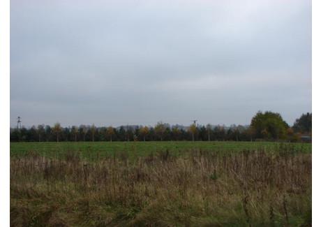 Działka na sprzedaż - Wczasowa Karwieńskie Błota 2, Puck, 4747 m², 410 000 PLN, NET-TJ011