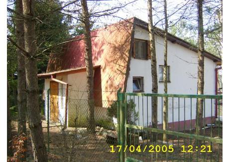 Działka na sprzedaż - Gołubie, Kościerzyna, 900 m², 175 000 PLN, NET-TJ01