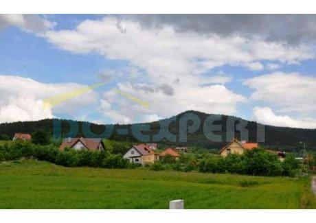 Działka na sprzedaż - Tąpadła, Marcinowice (gm.), Świdnicki (pow.), 3000 m², 135 000 PLN, NET-UST-0082