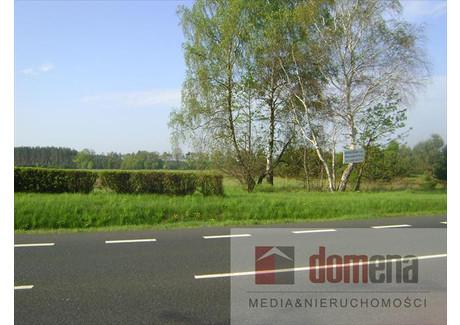 Działka na sprzedaż - Torzym, Sulęciński, 9800 m², 380 000 PLN, NET-103