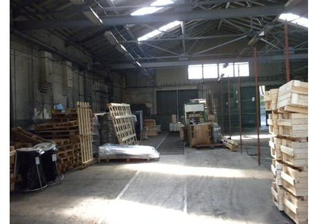 Obiekt do wynajęcia - Zielona Góra, 400 m², 4000 PLN, NET-45/1850/OOW
