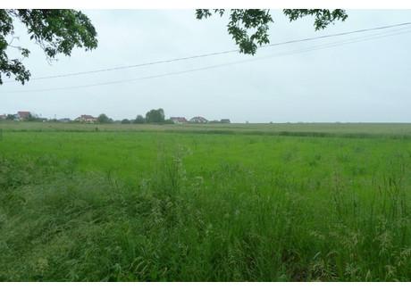 Działka na sprzedaż - Baczyna, Lubiszyn, Gorzowski, 2023 m², 120 000 PLN, NET-111/1864/OGS