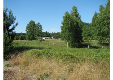 Działka na sprzedaż - Rybakowo, Kłodawa, Gorzowski, 18 300 m², 515 000 PLN, NET-60/1864/OGS