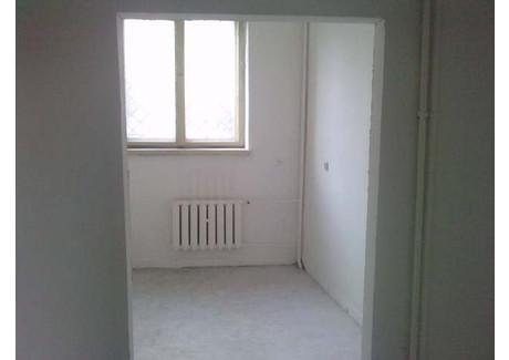 Biuro do wynajęcia - Krzyki, Wrocław, 67 m², 8250 PLN, NET-16867