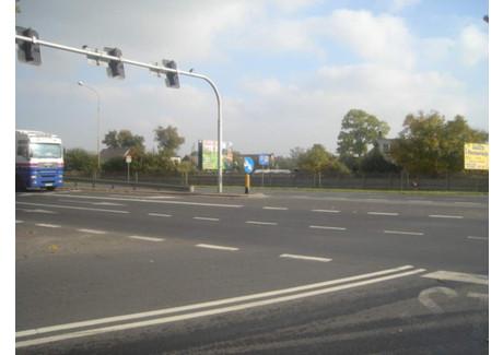 Działka na sprzedaż - Borowa Oleśnicka, Długołęka, Wrocławski, 31 900 m², 950 000 PLN, NET-16755